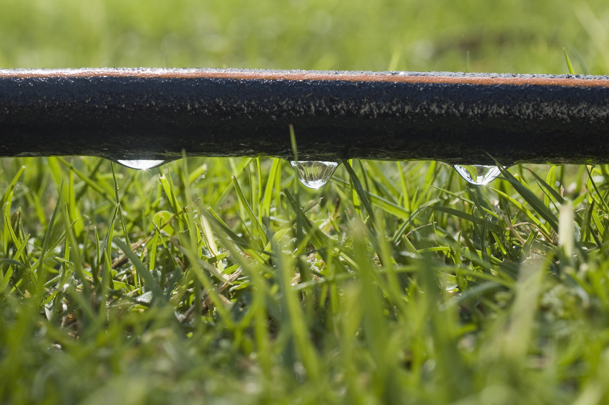 3 Common Uses For Drip Irrigation