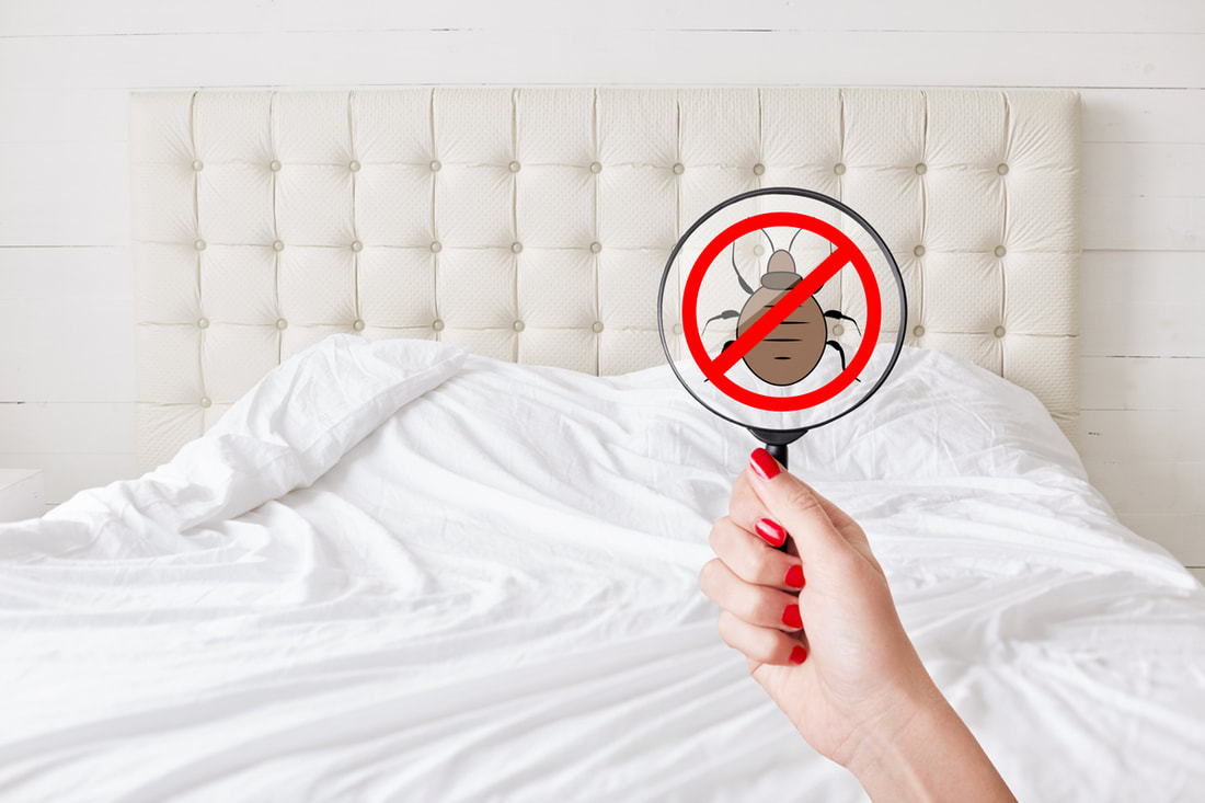 3 Reasons Clients Switch Pest Control Companies