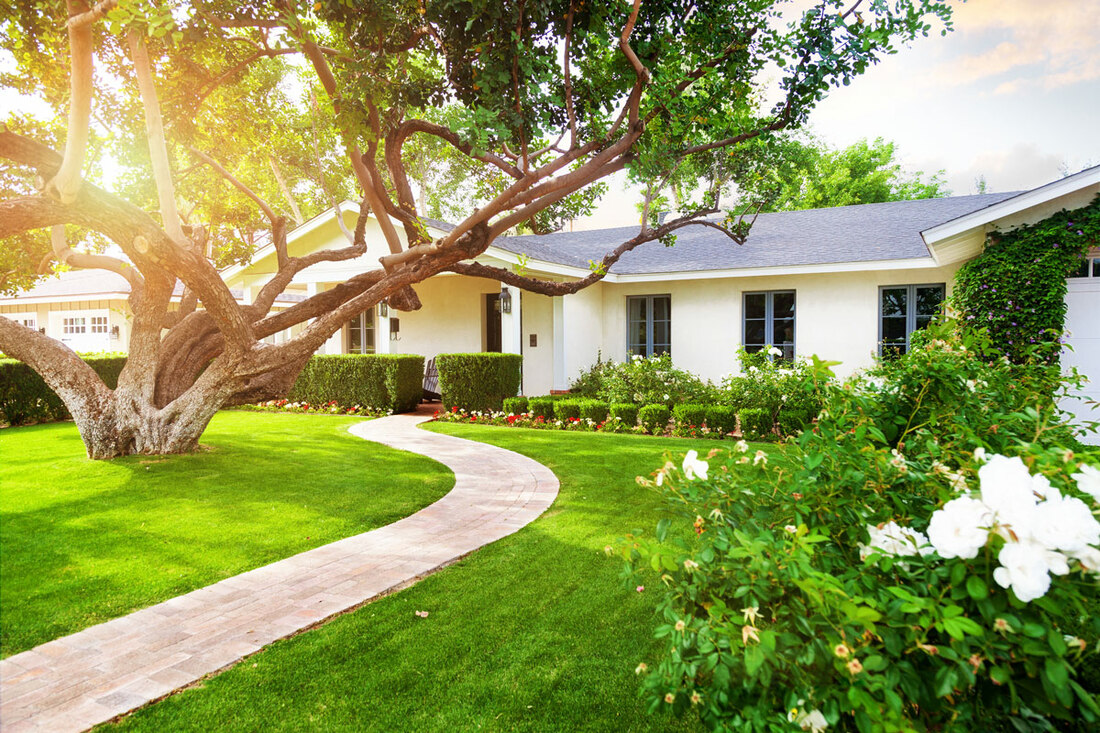 3 Water-Related Household Issues That Are Detracting From Your Termite Control Efforts