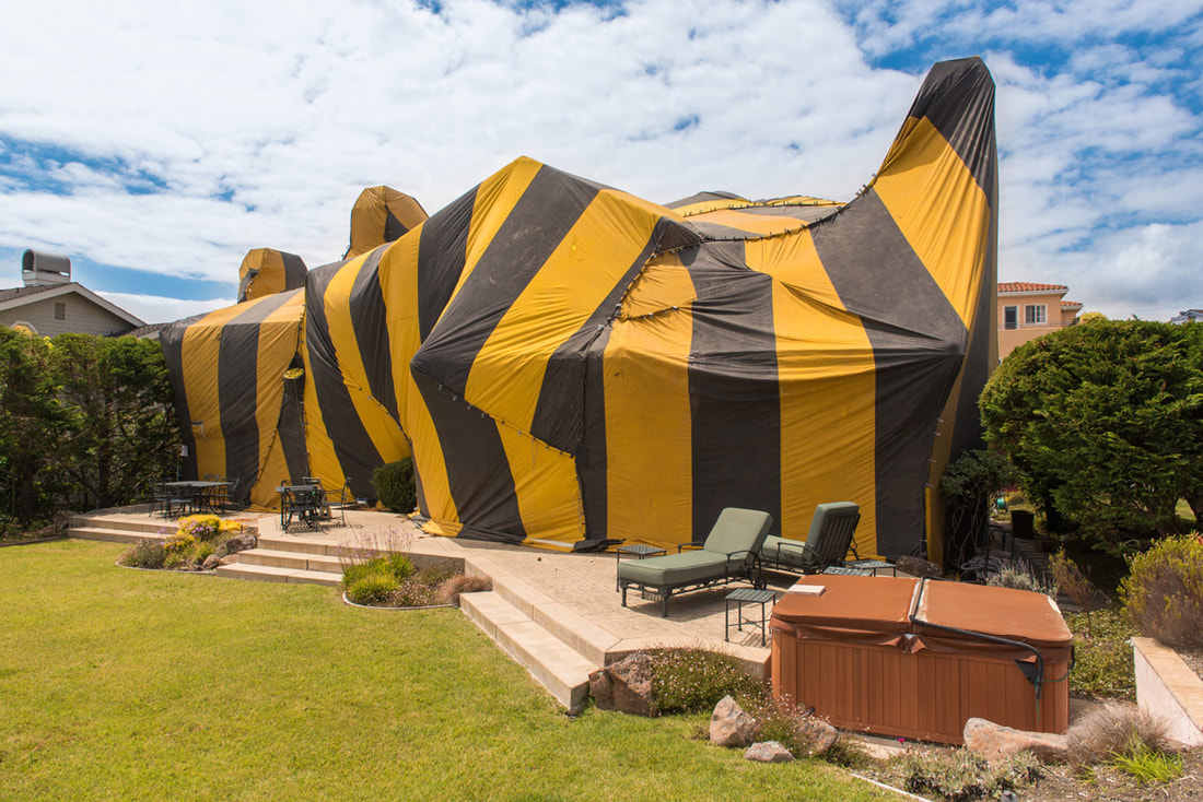 Are You And Your Home Fumigation Ready?