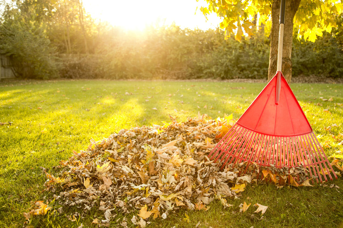 Are You Ready To Take On Your Fall Lawn Care Duties?