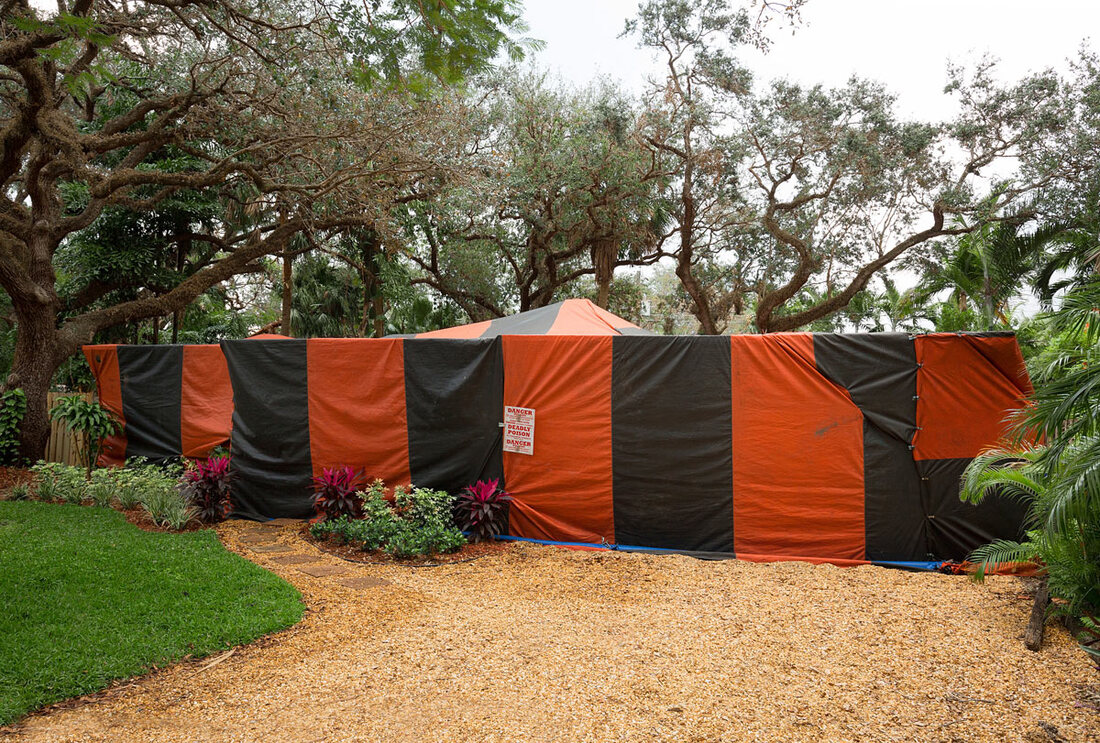Florida Fumigation: What It Means