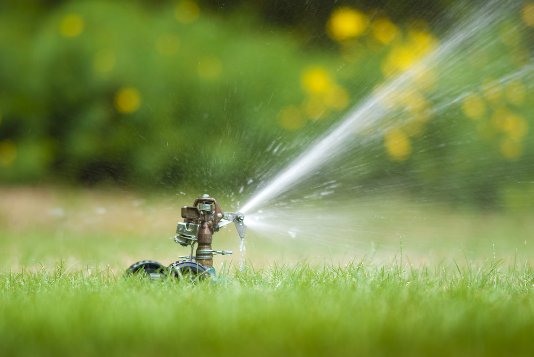 How A Poorly Designed Lawn Irrigation System Can Destroy Your Landscape