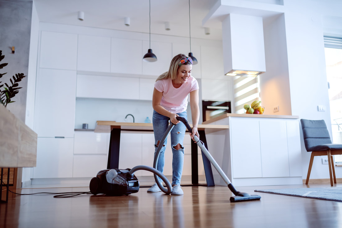 How To Prepare For Your First Pest Control Appointment