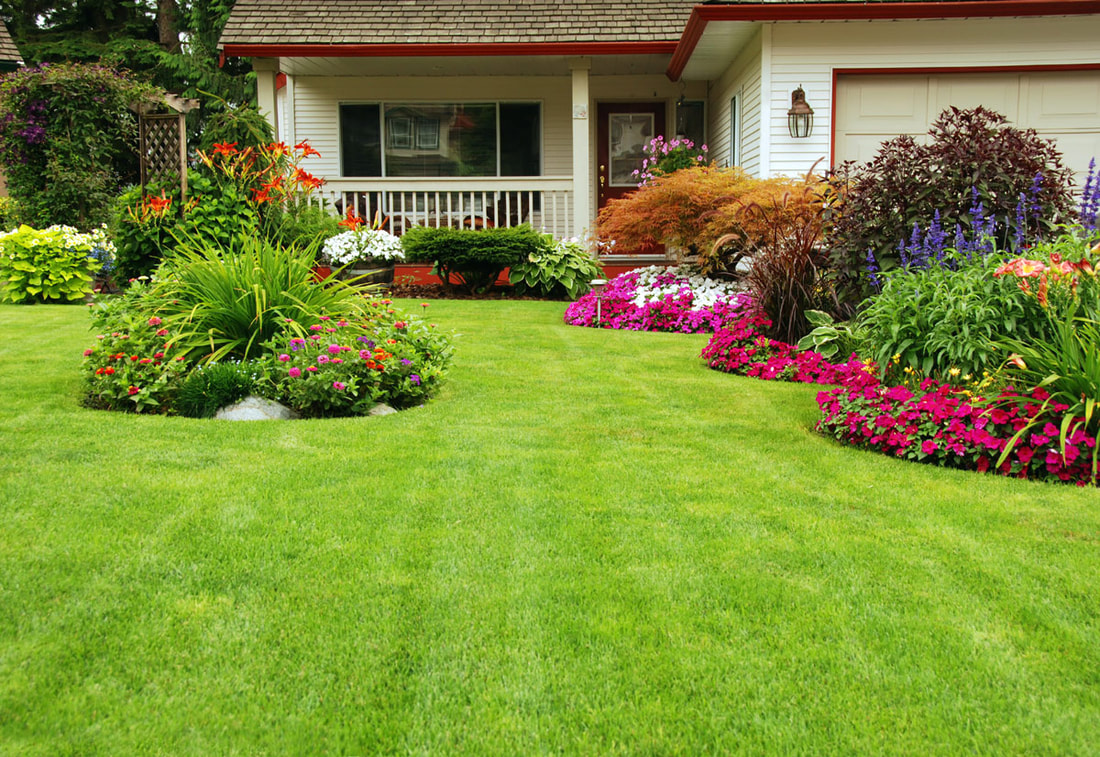 How To Protect Your Plants During Fumigation