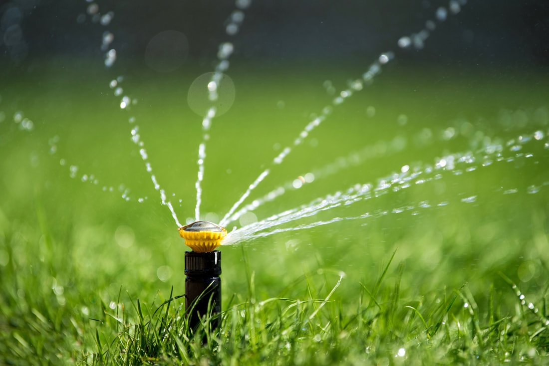 How To Self-Diagnose Your Irrigation Issues