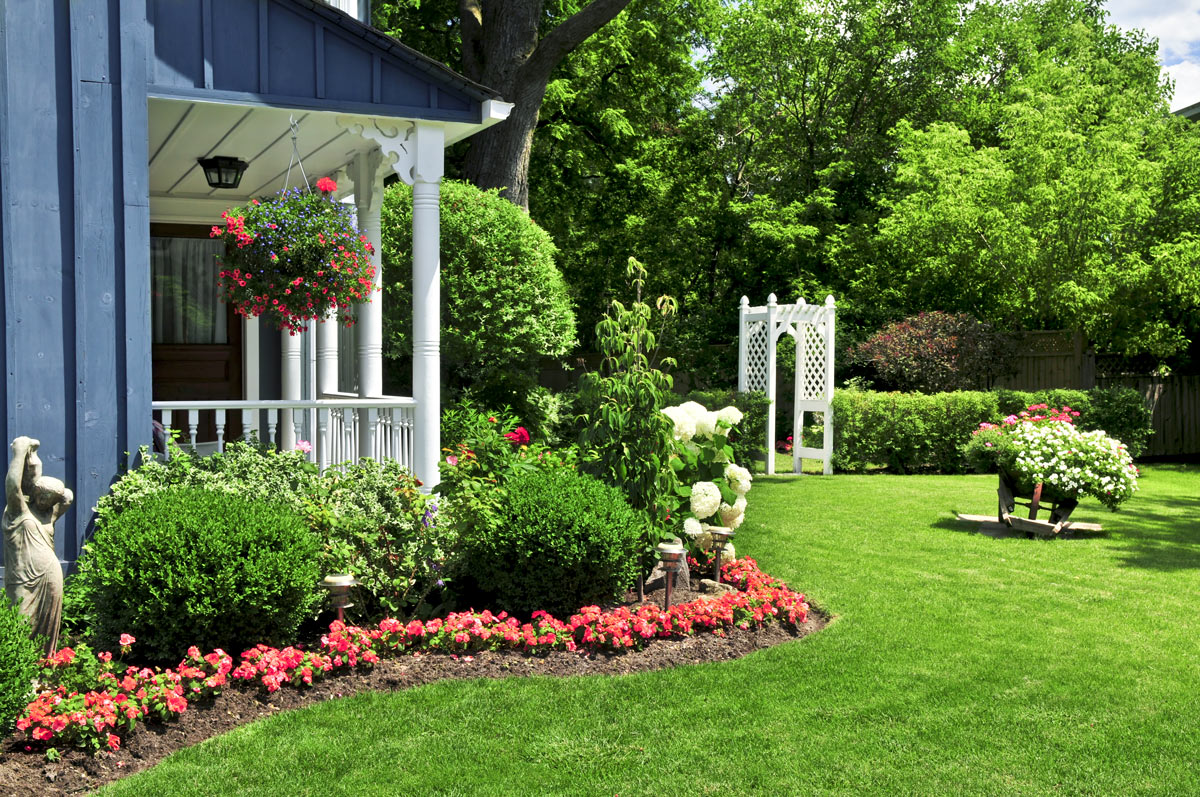 How You Can Keep Pests From Destroying Your Yard