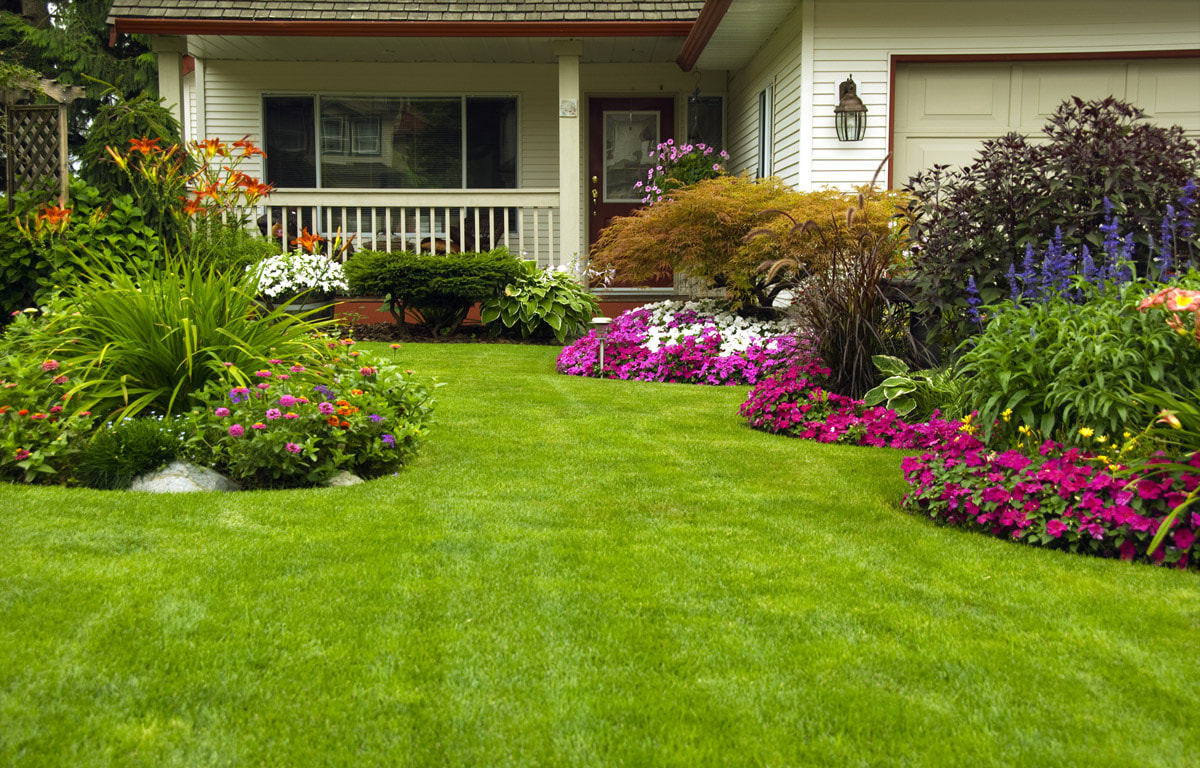 How Your Landscaping Can Make Or Break Your Termite Control