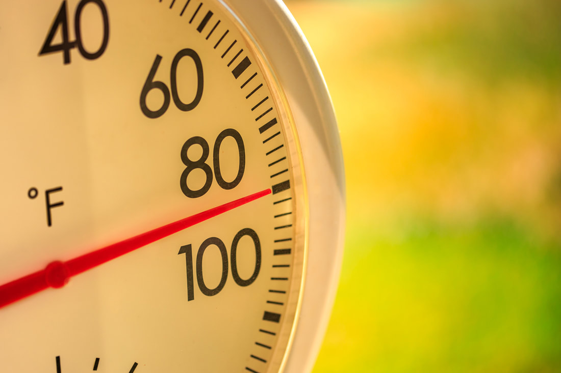 Lawn Care Tips For Beating The Summer Heat