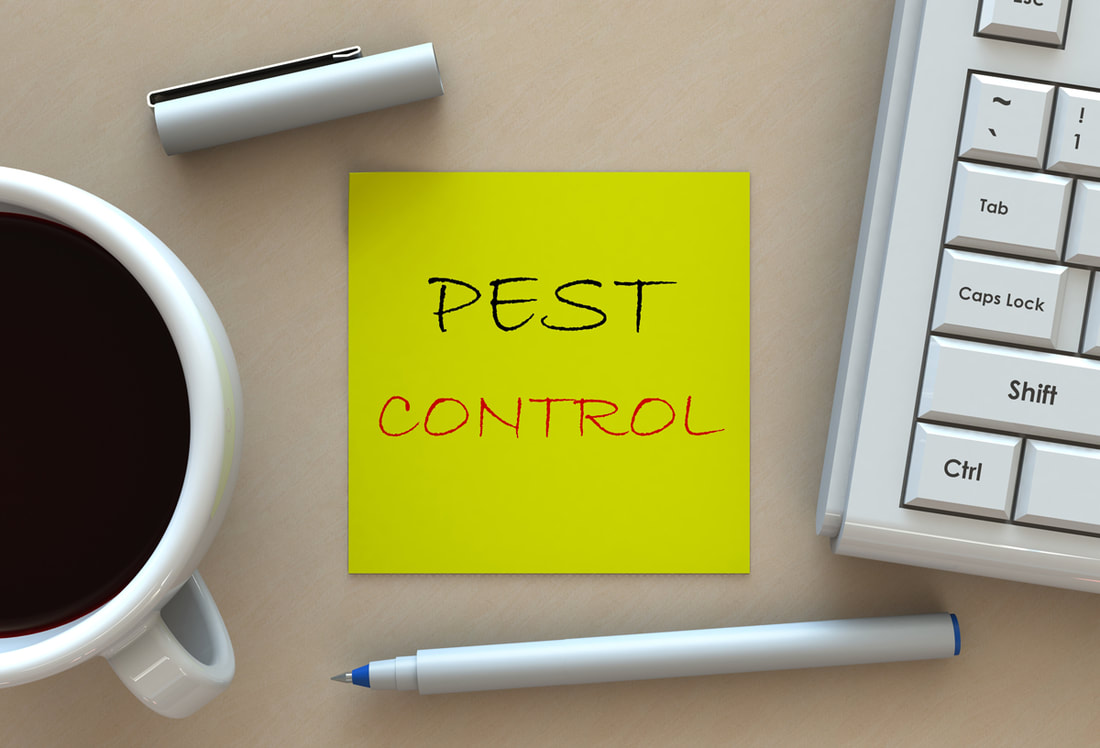 Pest Control That Helps Prevent Disease