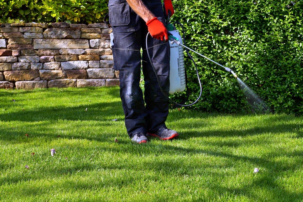 Professional Pest Control Has Environmental Benefits