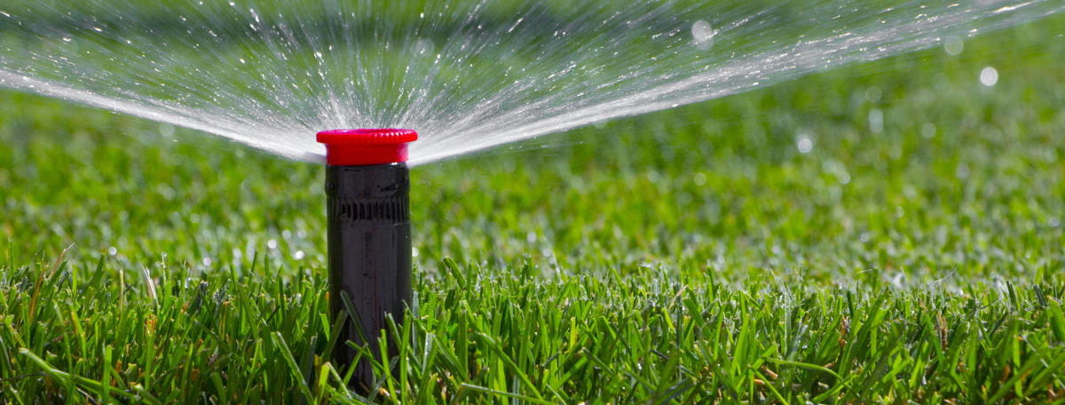 Save Your Money And The Planet With This Irrigation Hack