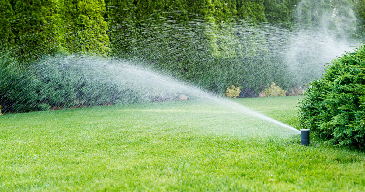 Some Unexpected Benefits Of Investing In Irrigation