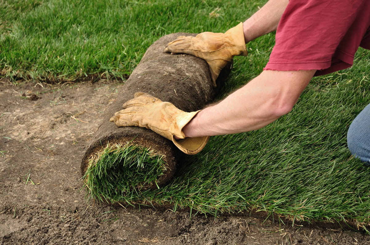 The 3 Things You Should Do Before Your Sod Install