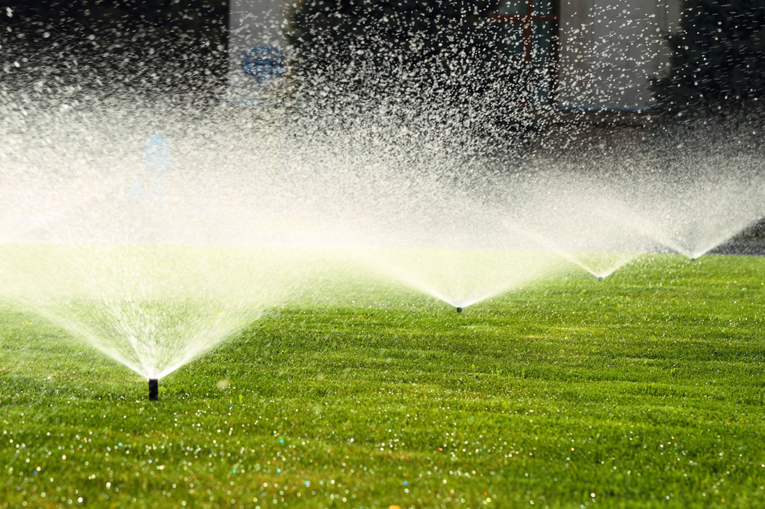 Transforming Your Lawn With Proper Irrigation
