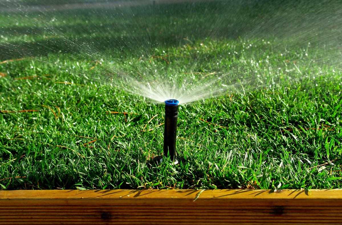 What Does Winter Irrigation Look Like in Central Florida?