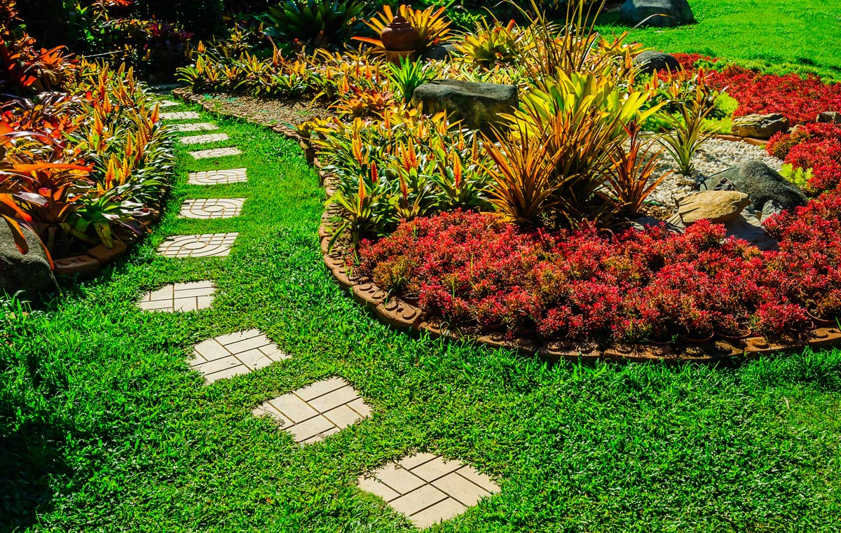 What Your Lawn Is Telling You About Your Lawn Care