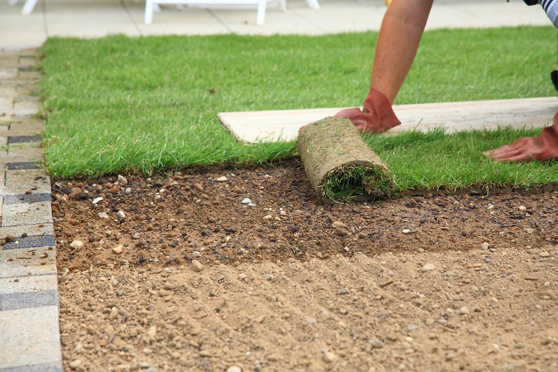 Why Landlords Should Include Lawn Care In Their Rental Agreement